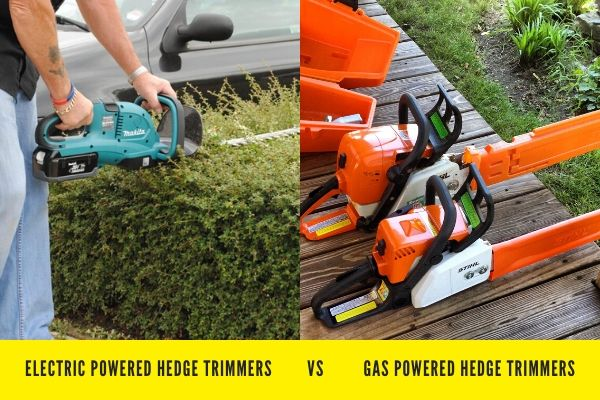 Electric VS Gas powdered Hedge Trimmers