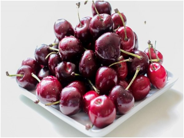 Can You Give Dogs Cherries
