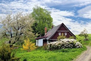 Emerging Landscaping Trends